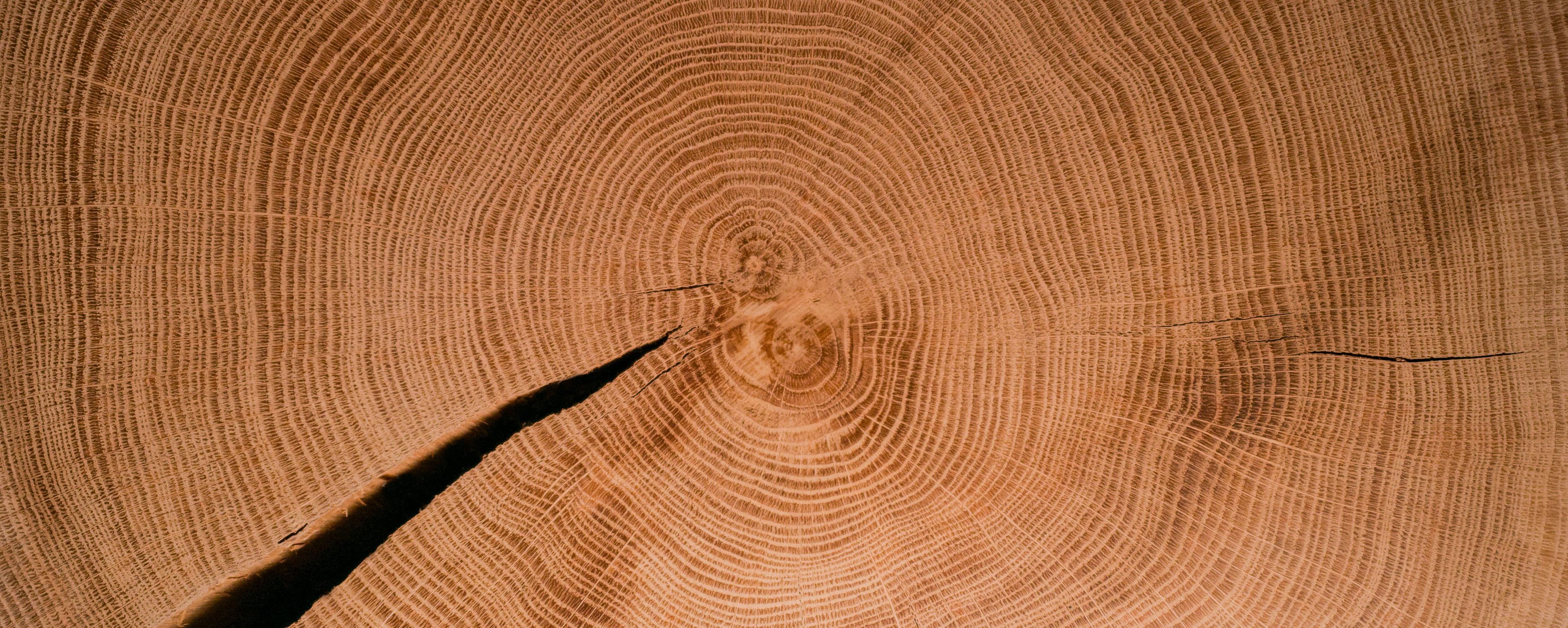 Particolare del materiale in legno